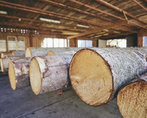 timber-at-the-sawmill